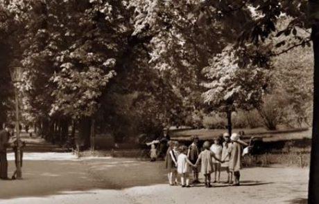 זכרונות של רות כהן לבית צוקרברוט