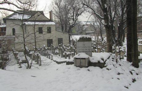 בטאון ינואר 2006