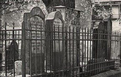 """על העץ שמצל על קברו של הרמ""""א"""